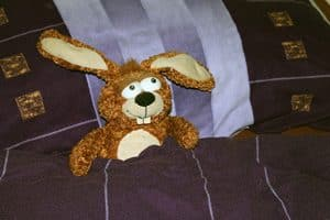 Knuffel in bed