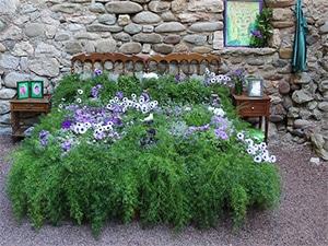 Planten Slaapkamer Baby : Beter slapen en ademen dankzij deze 11 planten in je slaapkamer!