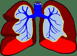 COPD longen
