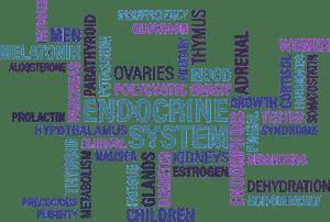 Endocriene stelsel