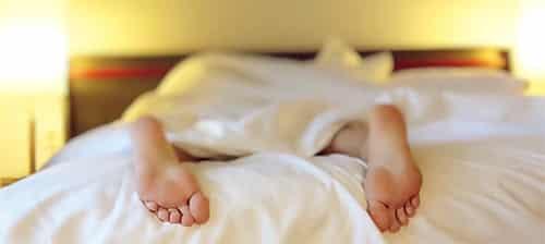 Polyfasisch slapen