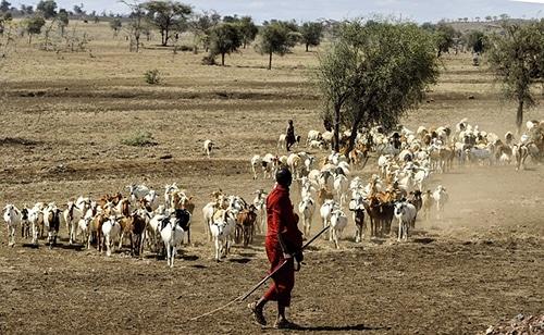 Jager uit een Afrikaanse stam