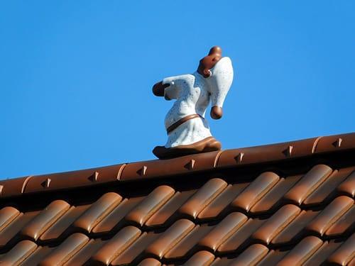 Slaapwandelen pop op dak